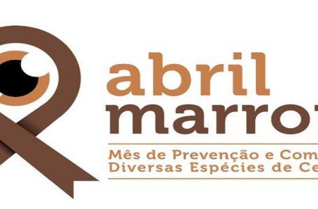 Abril marrom alerta as prevenções e causas da cegueira
