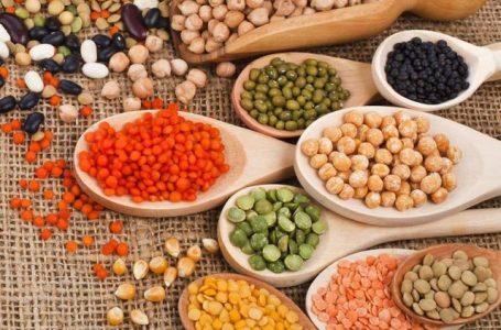 Isolamento social: Como escolher alimentos que não estragam rápido?